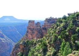 grand canyon free martin luther jr day